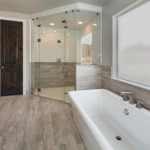 Custom Shower Frameless with tub